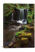 Rivelin Falls in Spring 4