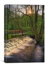 Rivelin Falls Sunset