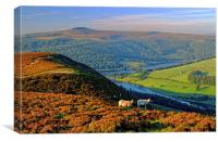 Ladybower Lookout, Canvas Print