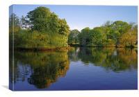Hillsborough Park Reflections, Canvas Print