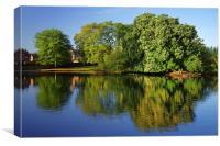 Hillsborough Park Reflections 2, Canvas Print