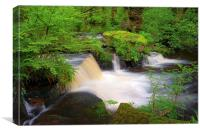 Rivelin Falls, Sheffield, Canvas Print