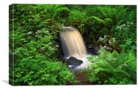 Rivelin Waterfall & Summer Foliage, Canvas Print