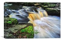 Rivelin Falls in Summer, Canvas Print