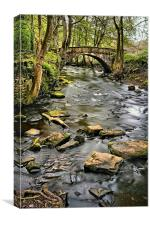 River Rivelin & Footbridge, Canvas Print