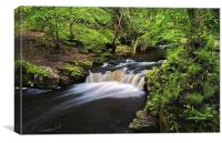 Rivelin Valley Falls