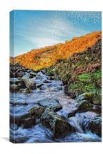Burbage Brook Waterfalls, Canvas Print
