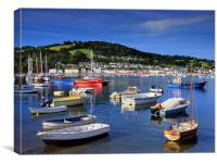 River Teign and Shaldon , Canvas Print
