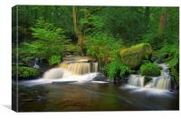 Double Waterfalls at Rivelin