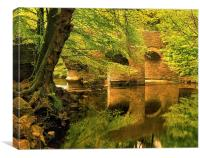 River Plym at Plymbridge, Canvas Print