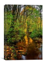 Rivelin Autumn Reflections , Canvas Print