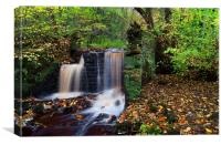 Rivelin Waterfalls in Autumn