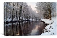 River Don in Winter