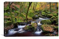 Autumn Colours in Padley Gorge , Canvas Print