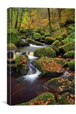 Padley Gorge Autumn Colours , Canvas Print