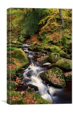 Padley Gorge Autumn Colours 2 , Canvas Print