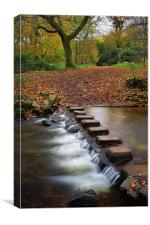 Porter Brook Stepping Stones and Falls, Canvas Print