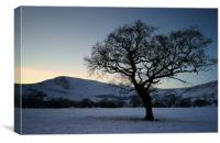Mam Tor and Lone Tree , Canvas Print