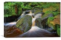 Wyming Brook Falls in Summer , Canvas Print