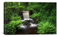 Rivelin Waterfall in Summer