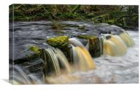 Yorkshire Bridge Falls and River Derwent, Canvas Print