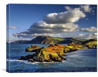 Watermouth Cove, North Devon , Canvas Print