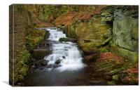 Lumsdale Waterfalls , Canvas Print