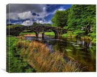 Two Bridges and West Dart River , Canvas Print