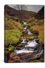 Looking up Blackden Clough , Canvas Print