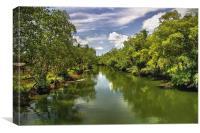 Mone River, Bislig , Canvas Print