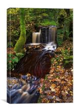 Rivelin Falls and Old Mill , Canvas Print