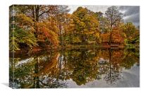 Lumsdale Autumn Reflections , Canvas Print