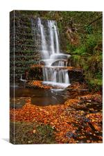 Lumsdale Autumn Leaves and Falls , Canvas Print