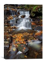 Lumsdale Waterfalls with Autumn Leaves , Canvas Print