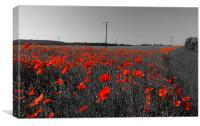 Train of Poppies , Canvas Print