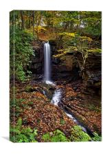 Cascading Falls in Lumsdale , Canvas Print