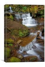 Lumsdale Cascading Falls, Canvas Print