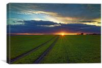 Penny Hill Farmland Sunset, Canvas Print