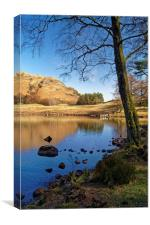 The Banks of Blea Tarn                      , Canvas Print