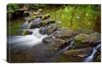 Porter Brook Falls,Endcliffe Park,Sheffield       , Canvas Print