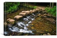 Endcliffe Park Stepping Stones and Falls          , Canvas Print