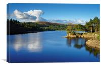 Burrator Reflections                              , Canvas Print