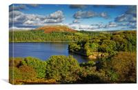 Burrator and Sheepstor                            , Canvas Print