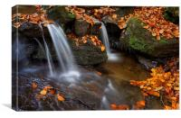 Porter Clough Falls                              , Canvas Print