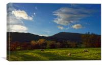 Sheep Grazing in Hope Valley                      , Canvas Print