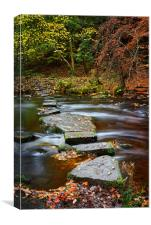 Rivelin Stepping Stones                           , Canvas Print