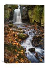 Lumsdale Falls Near Matlock                    , Canvas Print
