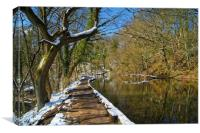 Rivelin Pond & Path in Winter                     , Canvas Print