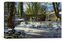 Upper Coppice Weir & Packhorse Bridge, Rivelin, Canvas Print