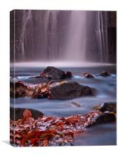 autumn leaves at the bottom of a waterfall, Canvas Print